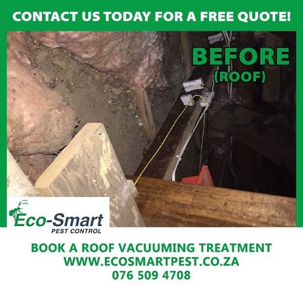 Roof Vacuuming Treatment