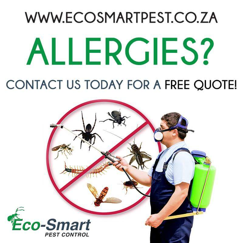 Allergies caused by Cockroaches, Mites, Rats & Mice