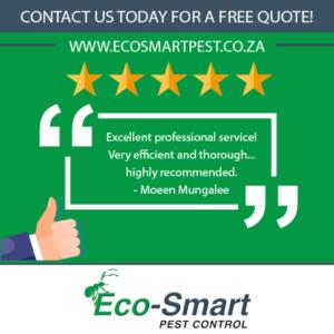 EcoSmart Pest Control Happy Clients