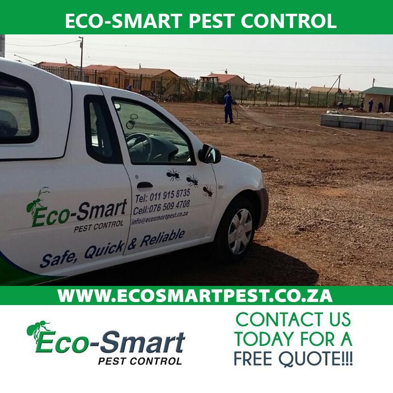 pest control imp