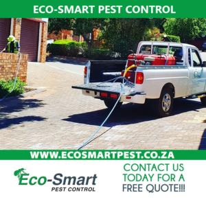 Professional pest control