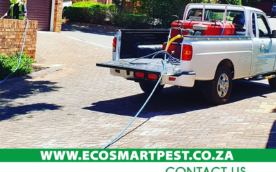 Fresh Ideas and solutions for Pest Control