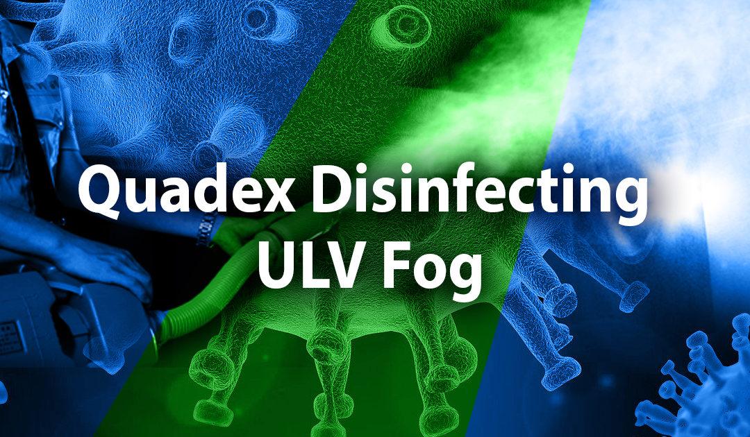 Disinfectant fog
